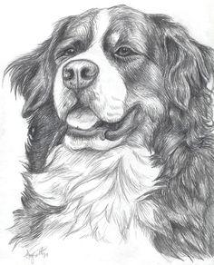 Bernese Mountain Dog by ~DemoDog on deviantART