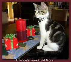 Picture Perfect Party Linky #21 ~ Amanda's Books and More #kitten #Christmas