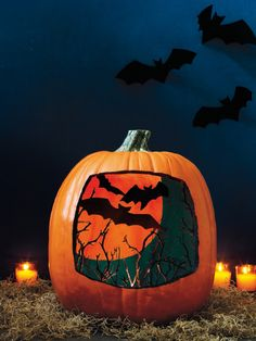 Halloween Fun - GO BATTY