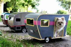 Just in time for dog days of summer, camper vans for your mutt | New York Post