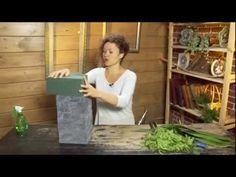 Композиция из веток жасмина. Ботаника. 254 - YouTube