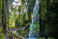 Ruta por la Selva Negra, Alemania Monteverde, Germany Travel, Switzerland, Beautiful Places, Places To Visit, Bavaria, Costa Rica, Nature, Lakes