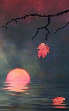 TABLEAU. COUCHER SOLEIL Easy Canvas Painting, Moon Painting, Simple Acrylic Paintings, Painting & Drawing, Canvas Art, Pastel Art, Moon Art, Tree Art, Painting Inspiration