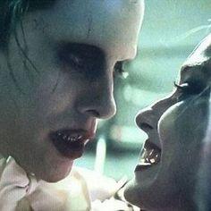 Joker and Harley Quinn Still IG: everything_dceucomics Joker Harley Love, Joker Joker, Arkham City, Arkham Asylum, Dc Comics Peliculas, Kings & Queens, Jared Leto Joker, Margot Robbie Harley Quinn, Harely Quinn