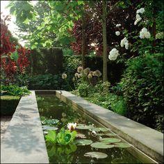 Zen Garden Design, Pond Design, Garden Pool, Lawn And Garden, Small Water Gardens, North Garden, Dutch Gardens, Pond Fountains, Pool Waterfall