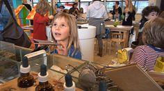 Ontdekhoek De Ontdekhoek is voor meisjes en jongens van 4 tot 14 jaar.  Een grote werkplaats waar je proefjes mag doen.  Ontdekken hoe je met zware keien snelstromend water kan tegenhouden, van een aardappel chips kan maken, foto's in een donkere kamer kan ontwikkelen, snelle zeilbootjes kan maken, heerlijk ruikende zeepjes...  Je mag zelf weten waar je mee begint. Je kunt kiezen uit meer dan 30 proefjes.