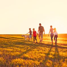 Summertime in the countryside. Silhouettes of the family with dog on. Best Of Intentions, Plein Air, Monument Valley, Countryside, Summertime, Country Roads, Silhouette, Stock Photos, Dogs