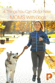 4 Things You Can Do for New Moms With Dogs – Petcurean