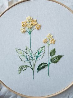 Hand Embroidery Projects, Basic Embroidery Stitches, Butterfly Embroidery, Couture Embroidery, Embroidery Motifs, Cross Stitch Embroidery, Machine Embroidery, Embroidery Designs, Brazilian Embroidery