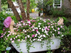 Lady in bath tub filled with I patients and vinca.