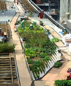 High Line é um parque linear de aproximadamente 2,5 Km construído em 2009 numa via férrea elevada de Nova York.  Nova sensação em Nova York, o High Line fica a 8 metros de altura e atravessa 3 bairros relativamente pouco visitados pela maioria dos turistas: Meatpacking, West Chelsea e Hell's Kitchen/Clinton.   http://sergiozeiger.tumblr.com/post/84440485558/high-line-e-um-parque-linear-de-aproximadamente