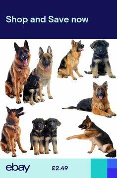 9c3603882 new german shepherd dog alsatians puppies greeting card dogs mum dad  birthday