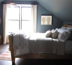 1000 Ideas About Blue Spruce On Pinterest Cedrus