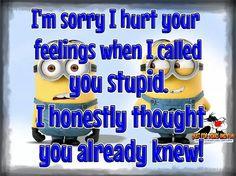Stupid ?