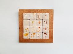 Tablou cu motive vegetale #12 | Corina Marina Ceramics Coasters, Coaster