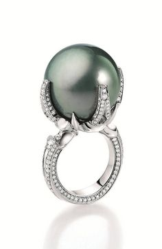 Black pearl ring, Gellner