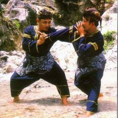 VIDEOS MARCIALES: SILAT. Kung Fu, Tai Chi, Vulcan Star Trek, Wing Chun Martial Arts, Minangkabau, Art Of Fighting, Indigenous Art, Action Poses, Aikido