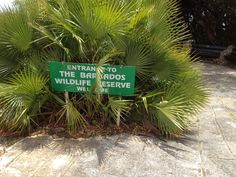 Entrance to the Barbados Wildlife Reserve.