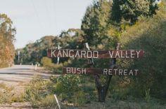 kangaroo-valley-bush-australian-wedding-scott-surplice Plants, Wedding, Kangaroo, Valentines Day Weddings, Baby Bjorn, Plant, Weddings, Marriage, Planets