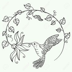 Hummingbird drinking nectar from a flower. A flying hummingbird inscribed in a circle of flowers. Black and white vector illustration. Hummingbird Tattoo Black, Hummingbird Drawing, Hummingbird Flowers, Arte Linear, Linear Art, Flower Coloring Sheets, Coloring Books, Coloring Pages, Circle Drawing