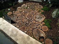 Wood slice walkway.