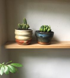 Thank you so much everyone who came out to the studio yesterday!! I'm thinking this week I will put some 'seconds' online for out of towners who like a bargain. But for today I'm at home in my sweats, planting a couple of cacti in my new wood fired pots