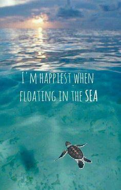 Send me to the sea