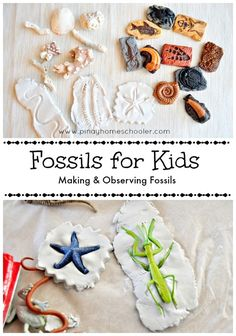 """This is earth science. I would read the students the book, """"Land Before Time."""" This lesson would incorporate art and reading and language arts. Fossils for Kids Science Fair, Science For Kids, Earth Science, Science Activities, Art For Kids, Activities For Kids, Crafts For Kids, Dinosaur Activities, Archaeology For Kids"""