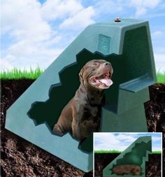 dogeden insulated doghouse :: the original self-heated, self-cooled underground doghouse using the earth's own natural temperature control system.