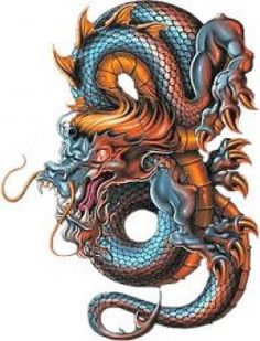 Dragon Tattoo Ideas, History, and Meaning: Chinese and Japanese Designs Considering getting a dragon tattoo? Read on for in-depth discussion of the meaning and symbolism of a dragon tattoo, including Chinese and Japanese designs, with many photos. Dragon Tattoo Designs, Small Tattoo Designs, Ankle Tattoo Small, Small Tattoos, Temporary Tattoos, Science Tattoos, Japanese Dragon Tattoos, Japan Tattoo, Celtic Dragon