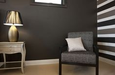 Paint for theatre room - Dulux Namadji