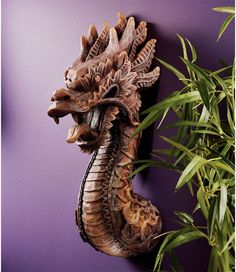 "Amazon.com: 18.5"" Chinese Dragon Wall Sculpture Statue Figurine: Home & Kitchen"