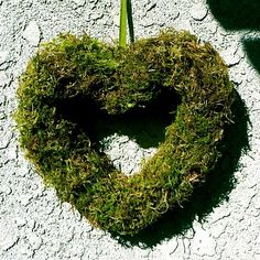 Valentines moss heart wreath