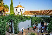 A garden courtyard of the Hacienda Los Miradores
