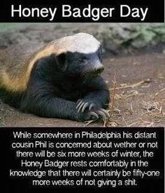 Honey Badger Day: Honey Badger don't care.