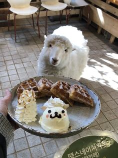 Honey and Sugar are my new best friends. Korean Aesthetic, Aesthetic Food, Korea Cafe, Korean Casual Outfits, South Korea Travel, Hongdae, Cute Cafe, Cute Sheep, How To Look Pretty