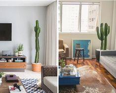 Como cuidar de cactos Cactus Plants, Patio, Outdoor Decor, Toque, Home Decor, Potted Trees, Growing Plants, Flowers, Succulent Plants