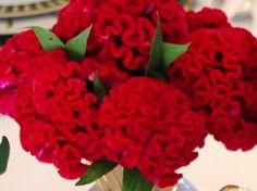 decoração com flores crista de galo vermelhas para centro de mesa de natal.