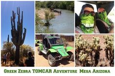 Why should you chose to visit Mesa for your next family vacation? It truly is a city limitless, full of fun adventure for all ages. Read about our exciting fun! Green Zebra, Travel Crafts, Adventure Activities, Family Adventure, Amazing Adventures, Arizona, Monster Trucks, Vacation, City