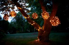 Lights in trees. love it.   via DesignMom.com: Living With Kids: Lynne Knowlton