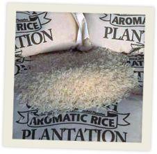 Home | Carolina Plantation Rice