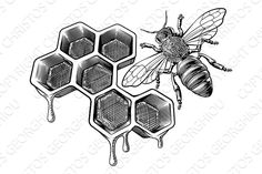 Sweeter Than Honey. Bee Stippling Drawings in Ink. Click the image, for more art by Dylan Brady. Bumble Bee Tattoo, Honey Bee Tattoo, Cool Art Drawings, Art Drawings Sketches, Honey Bee Drawing, Honeycomb Tattoo, Bee Honeycomb, Bee Sketch, Stippling Drawing