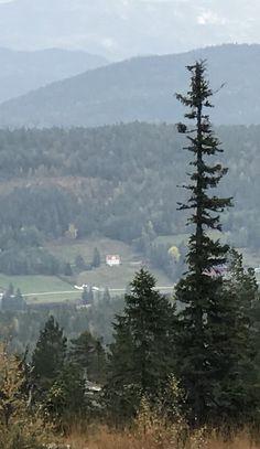Lia sett fra Rytterspranget Mountains, Places, Nature, Travel, Naturaleza, Viajes, Destinations, Traveling, Trips