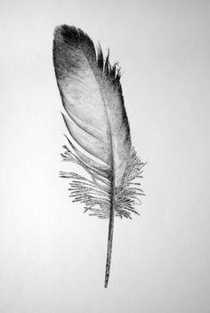 Image result for john douglas artist