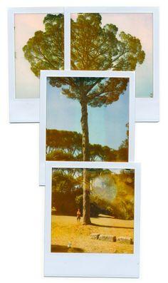 Polaroids by JeroenMylle