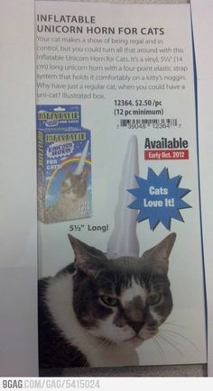 """Inflatable Unicorn Horn For Cat. Cats love it!"" Sure..."