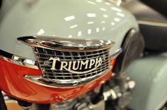Triumph Bonneville British Motorcycles, Vintage Motorcycles, Custom Motorcycles, Cars And Motorcycles, Triumph Motorbikes, Triumph Bonneville, Triumph Motorcycles, Vintage Harley Davidson, Mv Agusta