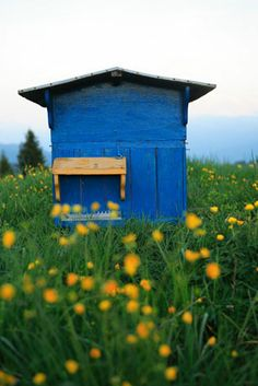 A bee hive in Haute-Savoie, France
