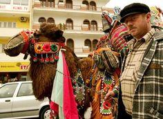 The Camel Wrestling Festival in Selcuk