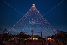 Images about christmas time in austin texas zilker holiday tree